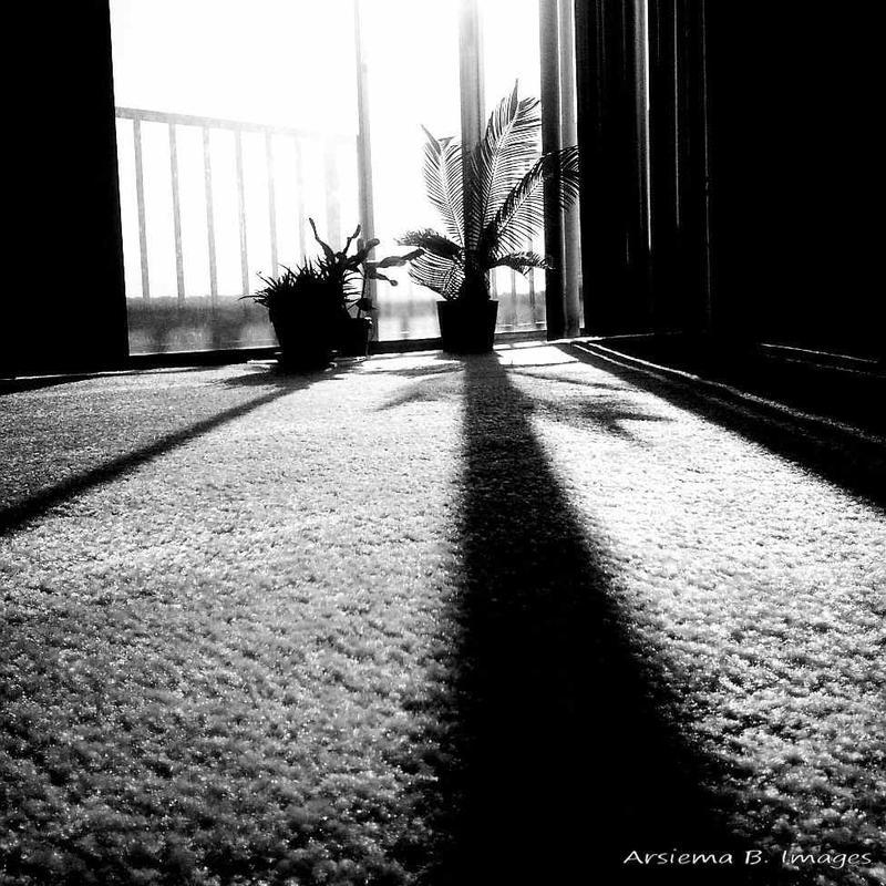 8:23 AM (W-24) by Arsiema