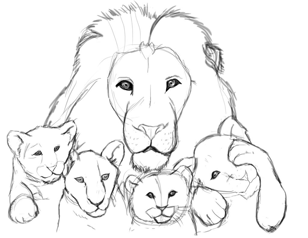 lion sketch by drawcolorful on deviantart