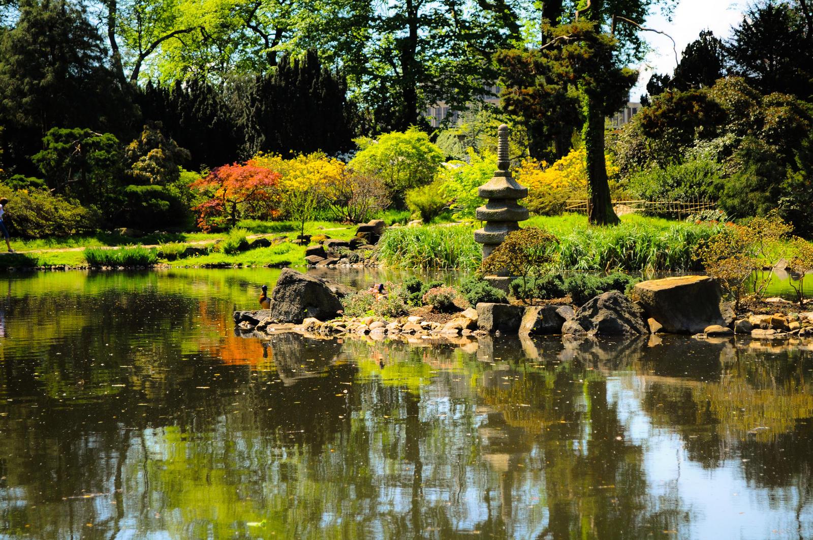 Zen Garden by PawnDude