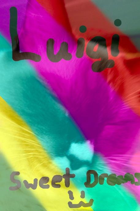 LUIGI! by Starinlove1