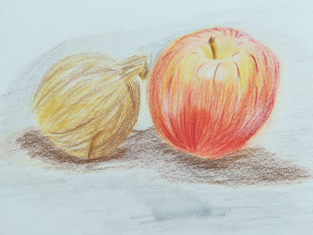 Colored still life  by Andrix9743