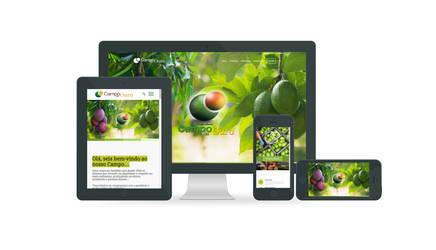 Website Campo de Ouro