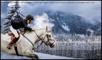 Snow horse by IrishRebel1993
