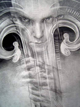 Plucked string instrument 3
