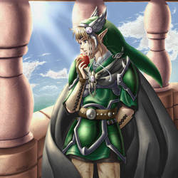 Zelda: Days and Knights by animetayl