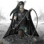 Zelda: Dark Knight Link