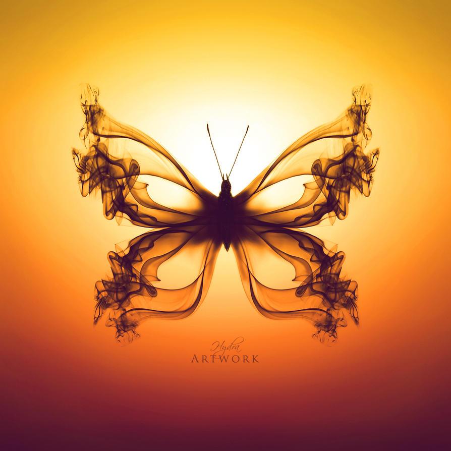 Butterfly I - Orange gradient