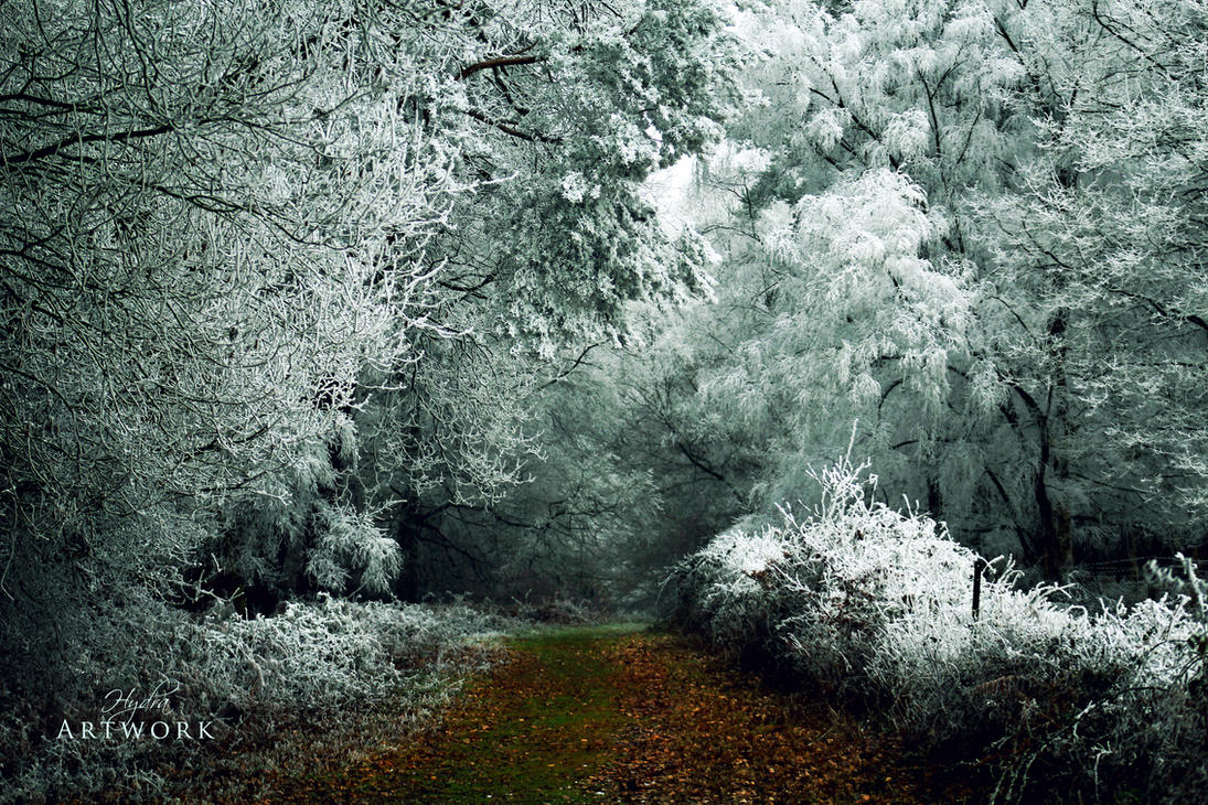 Winter by HYDRA-Artwork