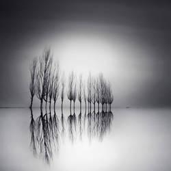 reflections by taykut