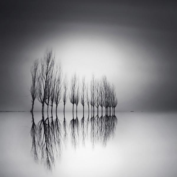 fotos en blanco y negro (muy buenas)
