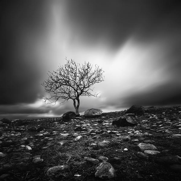 among the rocks by taykut