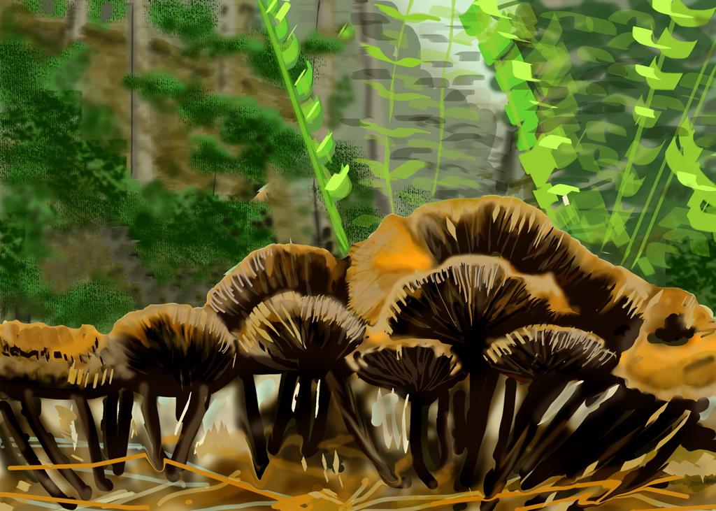 Mushroom Study by LocationCreator