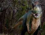 Rex Three
