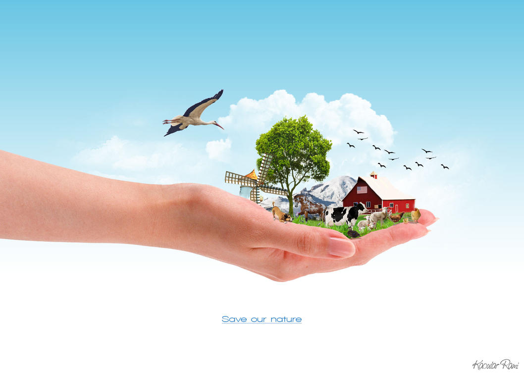 saving nature essay Saving earth is the most important social april to spread awareness regarding save earth among public save earth essay 5 food chain in the nature.