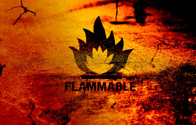 Flammable by xxDAxx