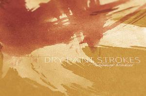 WG Dry Paint Strokes vol1 by wegraphics