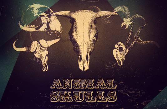WG Animal Skull Vectors