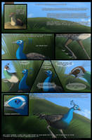 .: A Peacock's story - Page 1 :. by SinisterEternity