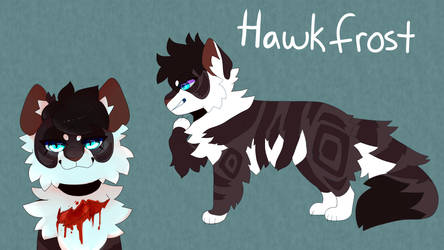 Hawkfrost by tinttiyo