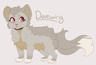 Dovewing by tinttiyo