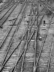Rat Race on Raildoad by uberdream
