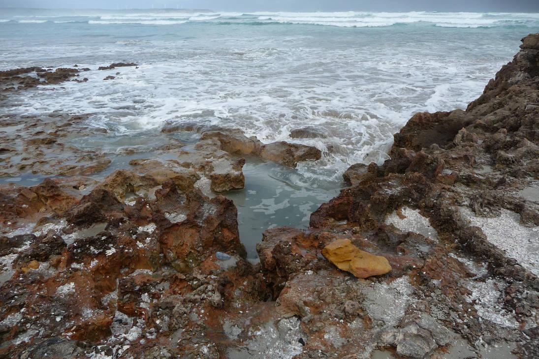 Shelly Beach: Redux 21