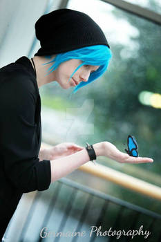 Butterfly effect - Chloe Price Cosplay