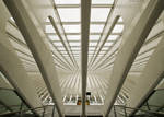 Curves of Guillemins