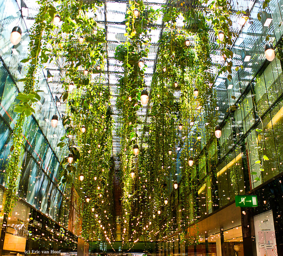Outdoor Vertical String Lights : Hanging Gardens and a Million Lights by GobboE on DeviantArt