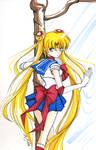 Sailor Moon marker