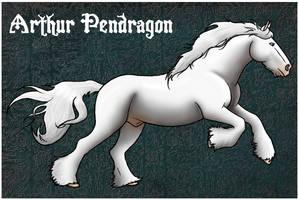 DDS Arthur Pendragon by DancingDragonStables