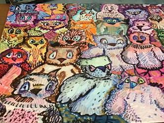 Owls detail