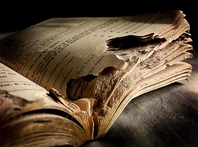 Book  __lost_words_by_tinkerblah-d3ivyfi
