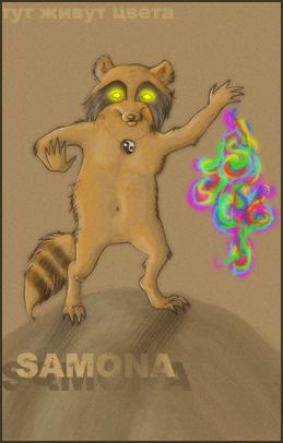 http://fc97.deviantart.com/fs28/f/2008/163/0/b/Second_coon_ID_by_Samona.jpg