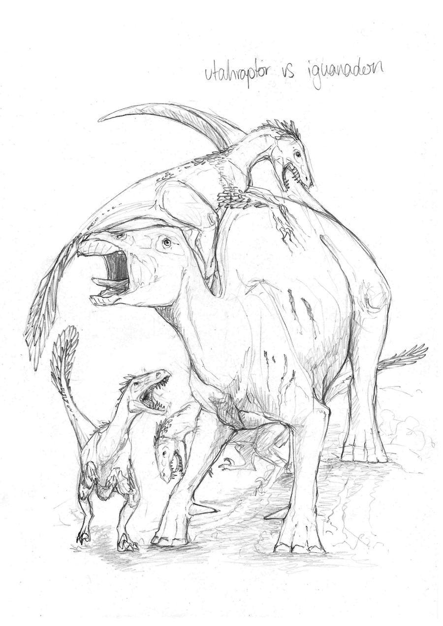 Utahraptor image 200 for Utahraptor coloring page