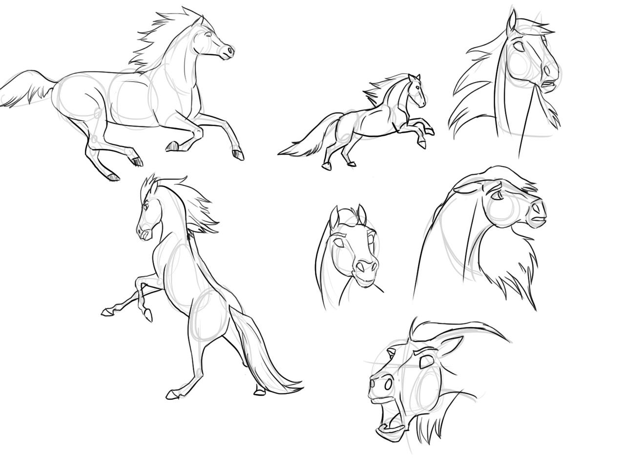 how to draw a horse images