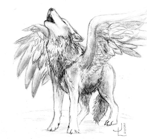 Winged Wolf Drawings Images amp Pictures Becuo
