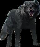 Thor Ragnarok - Fenrir PNG