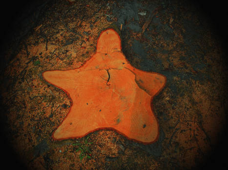 Star shaped death by artomberus