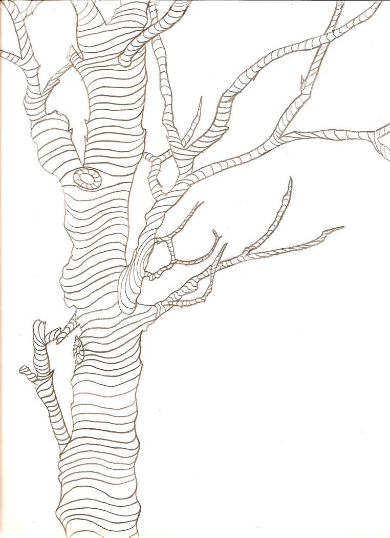 Contour Line Drawing Tree : Contour tree sketch by kurosakiann on deviantart