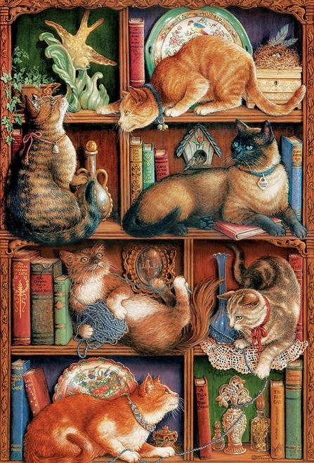 Bookcase Cat.03