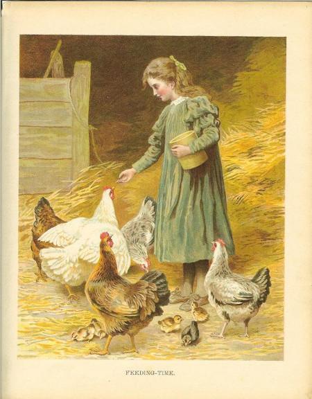 Girl Chick.13