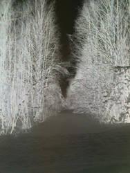 Scary negative by Printti