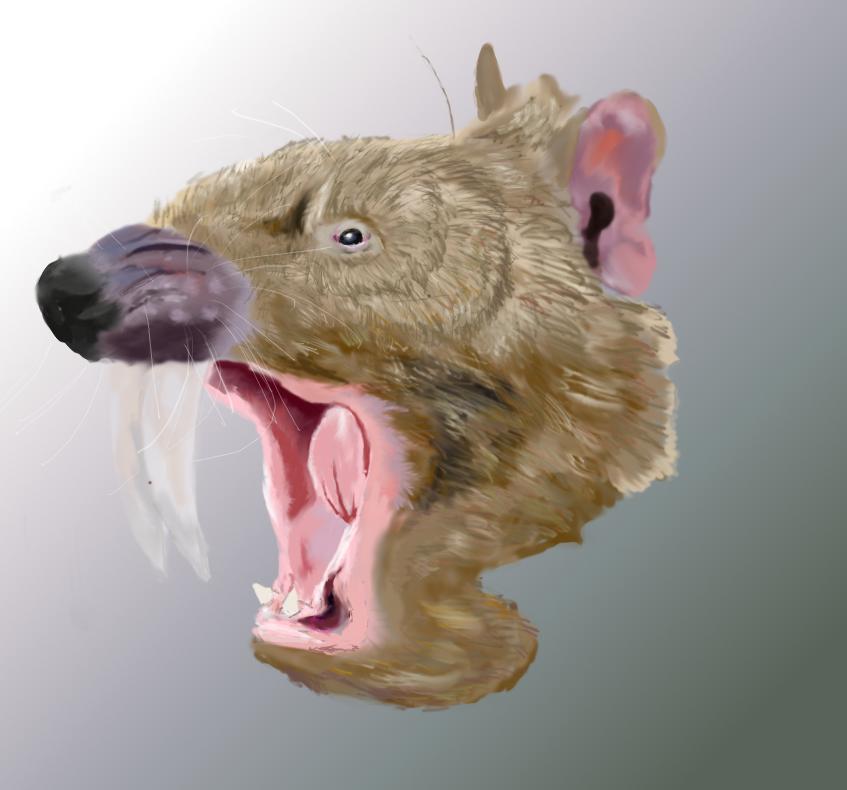 Thylacosmilus atrox by Mechafire1234