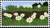 mc flowers by minkeraft