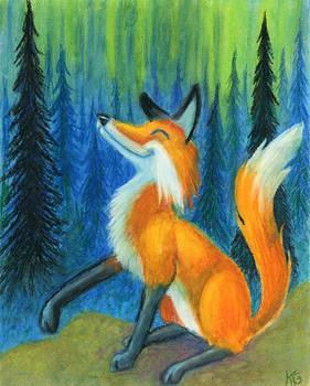 Northern Foxfire