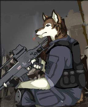 Sentry Duty
