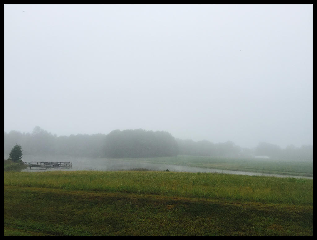 Foggy Landscape by WVUARTIST