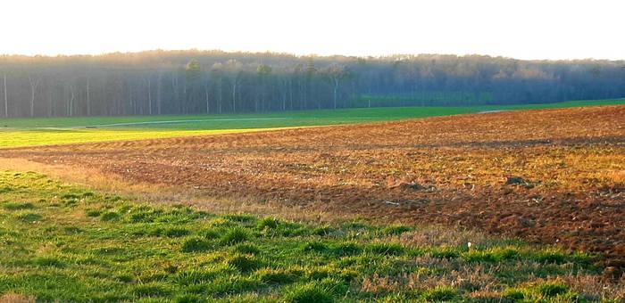 Farmscape 2