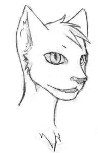 Krootman's Profile Picture